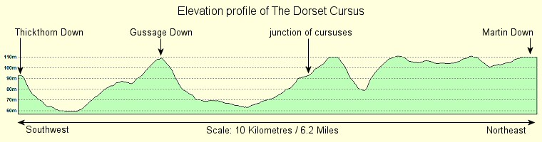 Stone Cat Elevation Profile : The dorset cursus east of sixpenny handley